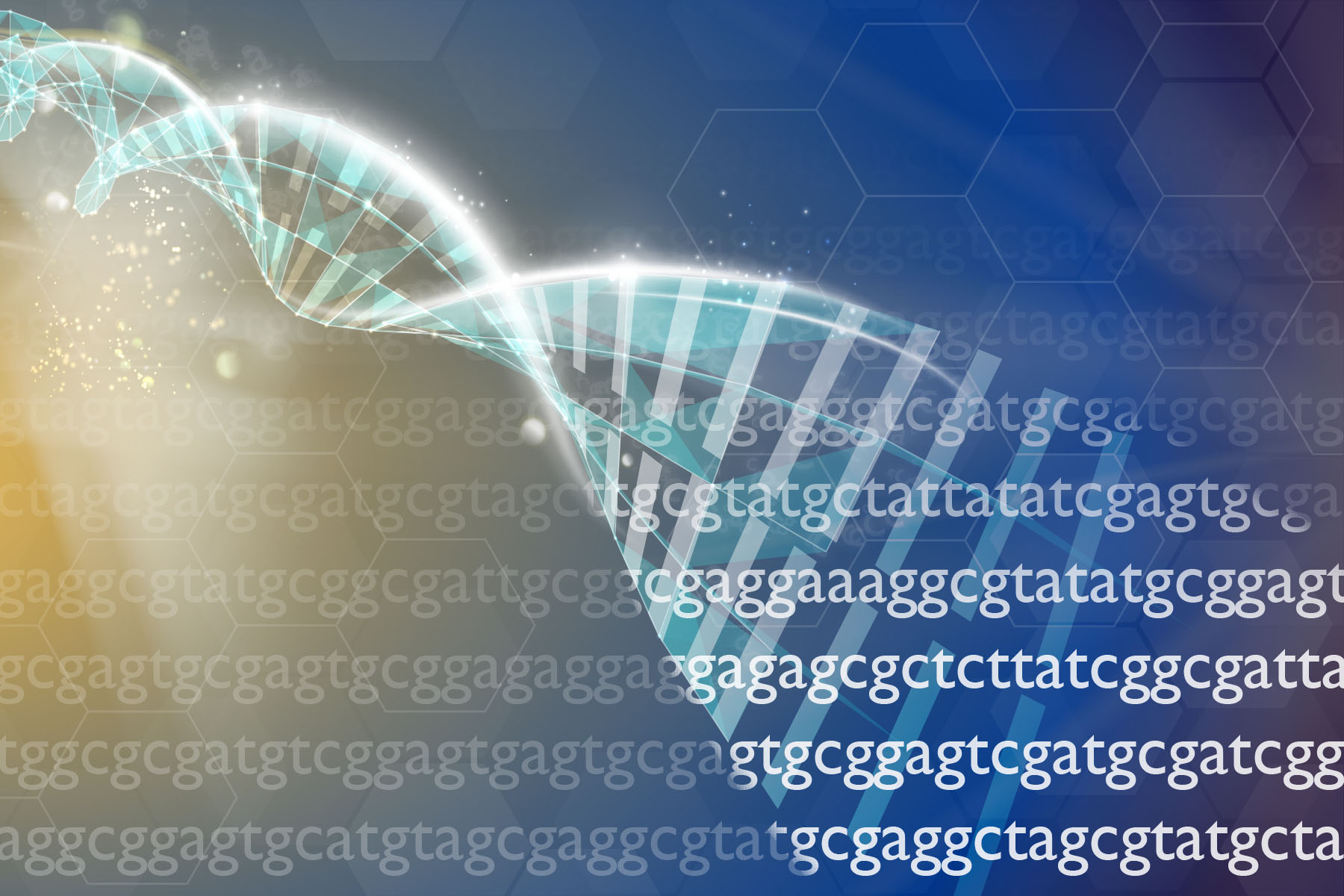 GFBR 2019 on 'genome editing for human benefit: ethics, engagement and governance'